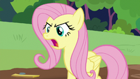 "Fluttershy ""the care of animals!"" S7E5"