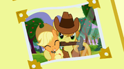 Photo album 2 (Braeburn and Applejack) S3E8