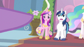 Princess Cadance pointed at S2E25.png