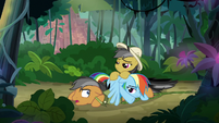 Rainbow, Quibble, and Daring in a pile S6E13