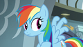 Rainbow curling her wing feathers S6E7.png