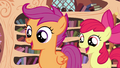 Scootaloo and Apple Bloom happy S4E15.png