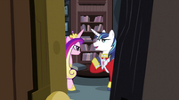 Shining Armor talking to Cadance S2E25