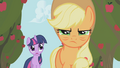 Applejack and Twi S01E04.png