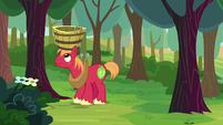Big McIntosh waiting for apples to fall S8E12