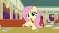 "Fluttershy ""we locked Rarity in the window display"" S6E9.png"