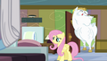 Fluttershy and Bulk check in on Rainbow S4E10.png