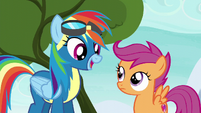 Rainbow Dash --right before the finale-- S6E7