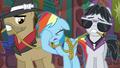 Rainbow Dash face-hoofs S6E13.png