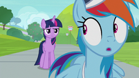 Rainbow Dash realizes Twilight is serious S9E15
