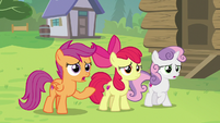 "Scootaloo ""you can't be a blank flank forever!"" S7E21"
