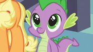 Spike at your service 29