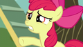 """Apple Bloom calling out """"just wait a second!"""" S5E4.png"""