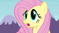 Fluttershy 'Maud would move mountains for her' S4E18