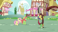 Fluttershy introduces Tree Hugger to Discord S5E7