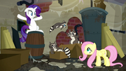 Fluttershy looking at raccoons; Smoky Jr. jumping to his parent S6E9