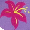 Lily Blossom cutie mark crop 2