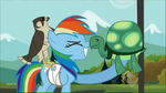 Rainbow Dash and Tank rub noses S2E07
