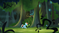 Rainbow Dash trotting through forest S4E04
