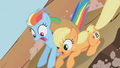 Applejack and Rainbow Dash1 S01E13.png