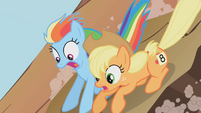 Applejack and Rainbow Dash1 S01E13