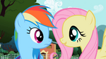 Fluttershy looking at Rainbow Dash S2E07
