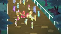Ponies walking S4E20