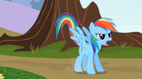 Rainbow Dash dropping down to the ground S2E07