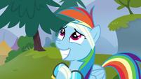 Rainbow Dash super happy S6E7