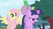 S01E01 Fluttershy chce wiedzieć wszystko o Spike'u