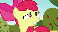 Apple Bloom shocked -what-!- S5E4