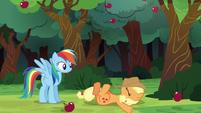 Applejack's hat lands on her face S6E18