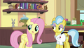"""Fluttershy """"made themselves right at home"""" S7E5.png"""