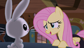Fluttershy asks Angel for advice S5E21.png