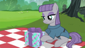 Maud Pie looking at her present S6E3.png