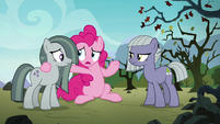 "Pinkie Pie ""what does she see in him?"" S8E3"