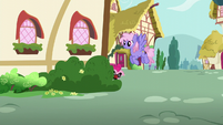 Pinkie Pie hiding behind the house S5E19