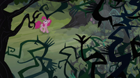 Pinkie walking in the Everfree Forest 2 S3E03