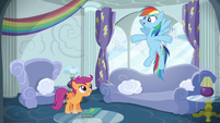 Rainbow Dash --have as much fun as I did-- S6E14