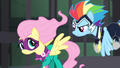 Rainbow tells Fluttershy to get mad S4E06.png
