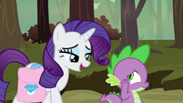 Rarity -you could pay Zecora a visit- S8E11