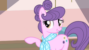 S04E08 Suri do Rarity