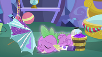 Spike sleeping and covered in glitter MLPBGE