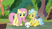 Angel and Dr. Fauna caring for Fluttershy S9E18