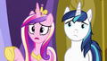 Cadance and Shining Armor looking heartbroken S7E3.png
