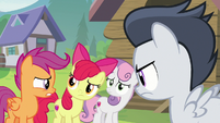 Cutie Mark Crusaders look at each other worried S7E21