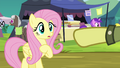 Daring Do collector makes Fluttershy part of the trade S4E22.png