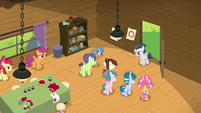 Day Camp foals gathering around Rumble S7E21