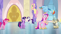 Everypony panicking S03E12.png