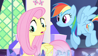 Fluttershy -On second thought- S5E1